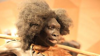 Mágneses pólusváltás vezethetett a neandervölgyiek kihalásához