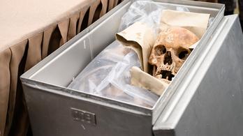 Történelmi lépés jöhet az Árpád-házi királyok csontvázainak feltárásában