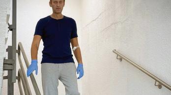 "Navalnij megmérgezése ""kontroll-protokoll"