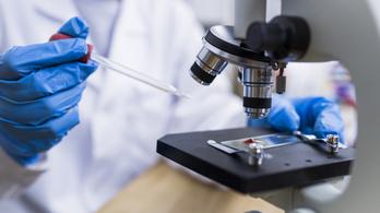 Több mint 87 ezer kutatás készült az új koronavírusról