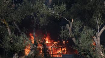 Tűz ütött ki egy görögországi menekülttáborban, meghalt egy gyermek