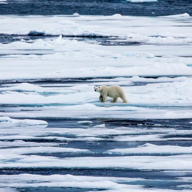 Megjósolhatatlanná válik a jövő a jégtakaró olvadása miatt: eddig ismeretlen problémát tártak fel