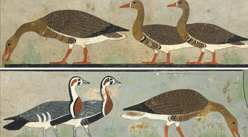 egyiptomi-festmeny