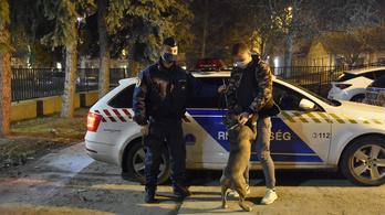 Kutyát loptak Gödön, végül Heves megyében lelték meg Jockey-t