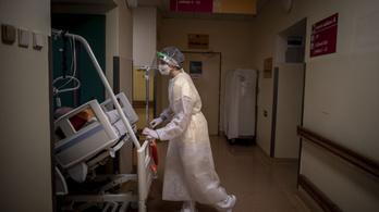 Már több mint húszezer életet követelt a koronavírus Csehországban
