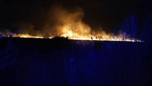 Pusztító tűz a Balatonnál