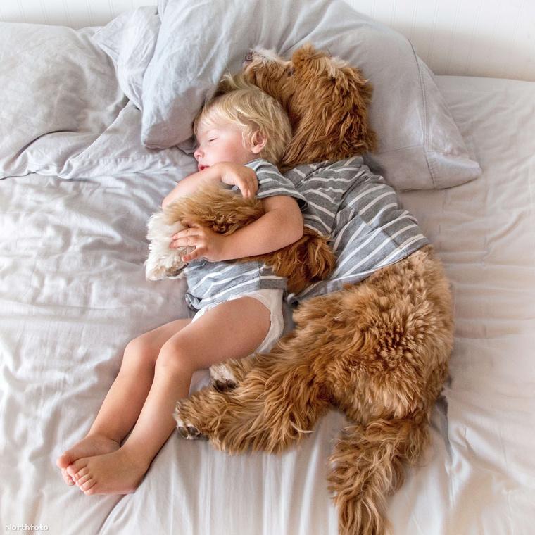 És egyszerre dőlnek be az ágyba fáradtan