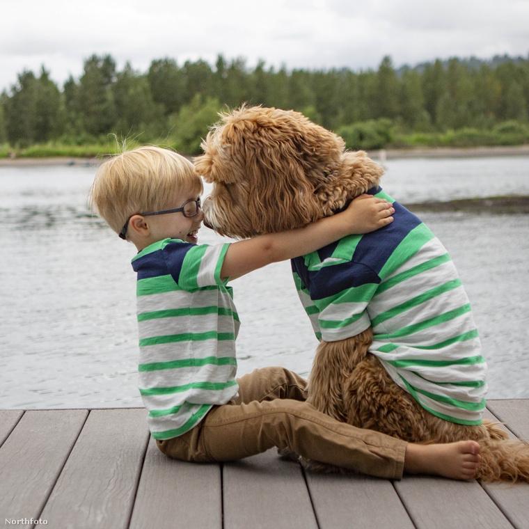 A kisfiú és a kutyája Amerikában már több éve nagy népszerűségnek örvend, több videót is találni róluk Youtube-on.