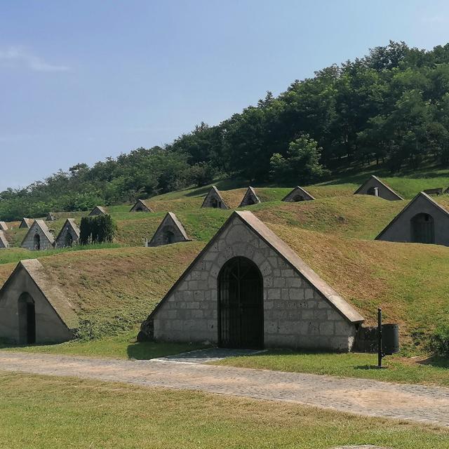 A tokaji borvidék egyik legszebb helye mesébe illik: a világörökség része a Gombos-hegyi pincesor
