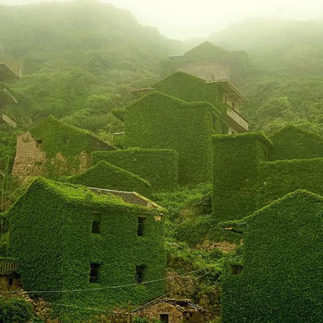 10 sokatmondó fotó a természet erejéről: mindig visszaveszi, ami az övé volt