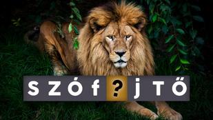 Miért pont oroszlánrészt vállalunk valamiben? Van köze a szólásnak az állathoz?