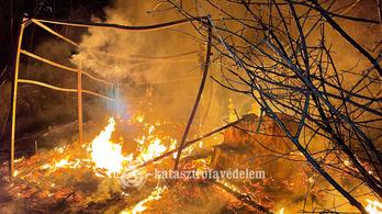 Megégett egy ember Pécsen