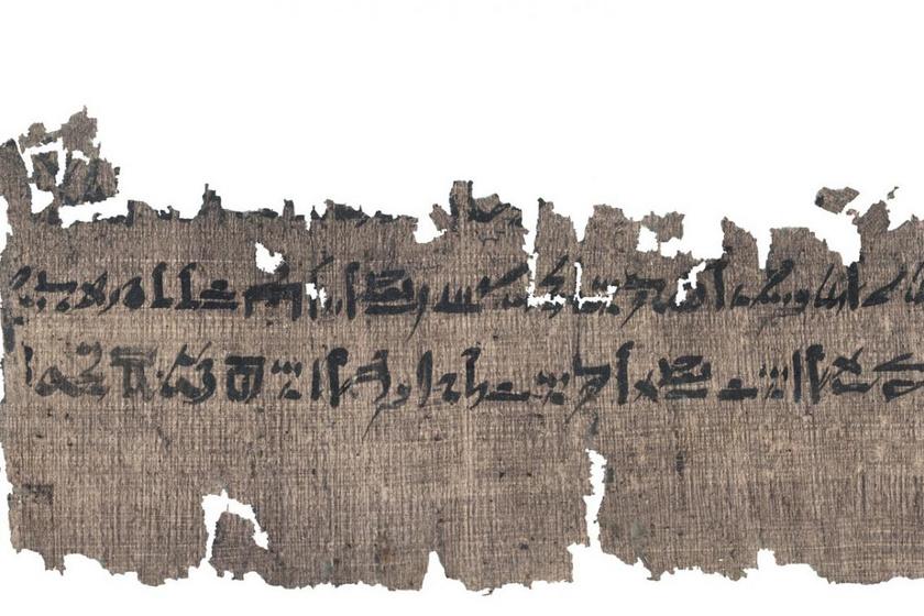 A Carlsberg-kollekcióból származó papirusz egy része.
