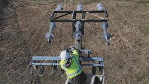 Elektrosokk pusztítja a madarakat