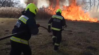 Nyolc vízsugárral támadták a gyorsan terjedő fóti tüzet