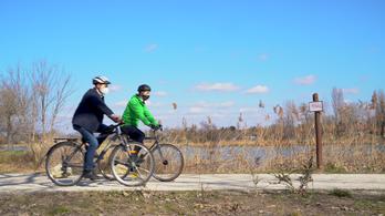 Mégis megmenekülhet a dél-pesti kerékpárútprojekt