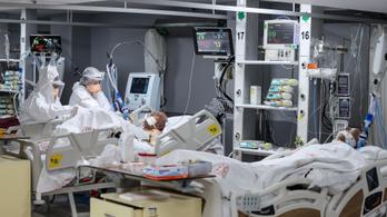 Súlyosabb kimenetelű férfiaknál a koronavírus-fertőzés