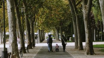 Költözzön külföldre az, akinek két anyja van