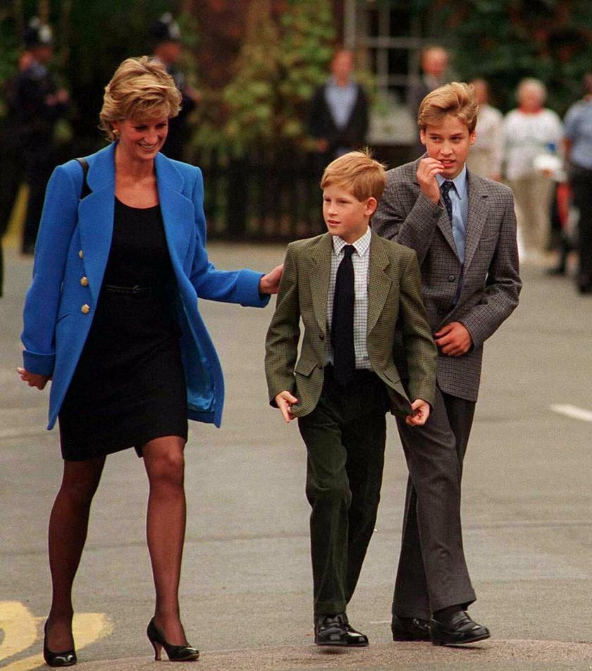 Ez a kép Dianáról és fiairól 1995-ben készült.
