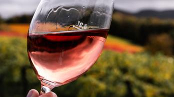 A pandémia miatt megmaradt borokból készítenének fertőtlenítőszert az olaszok