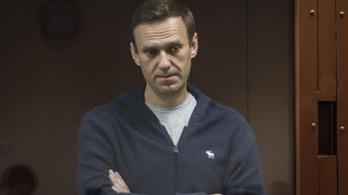 Koncentrációs táborhoz hasonlítja a javítótelepét Alekszej Navalnij