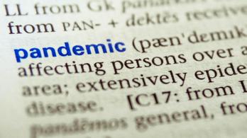 Padlóra küldi a nyelviskolákat a koronavírus