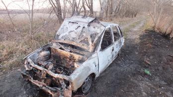 Kis híján leégett az erdő Tökölnél egy kigyulladt autó miatt