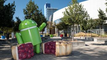 Felezi a Play áruház jutalékát a Google