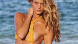 Ennek a kanadai bikinimodellnek magyar vizslája van