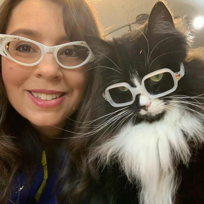 Danielle kicsi, lencse nélküli szemüvegkereteket készíttetett macskájának, és megtanította neki, hogyan viselje azt, ezzel szolgálva a nemes célt.