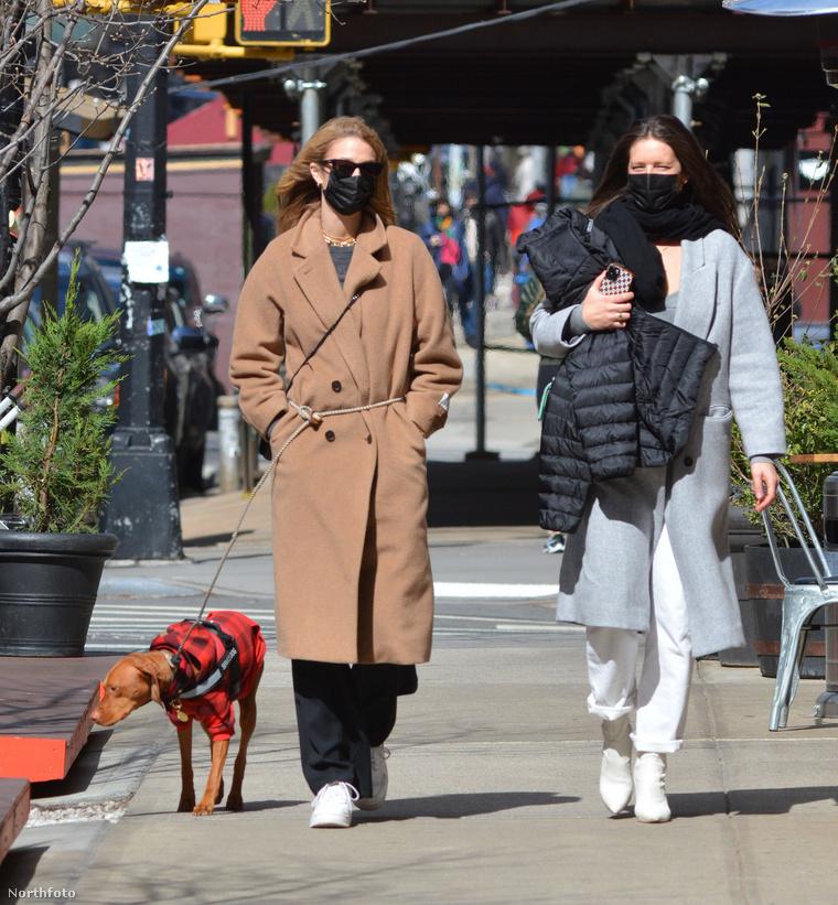 Kate Bock vizslát sétáltat New Yorkban.