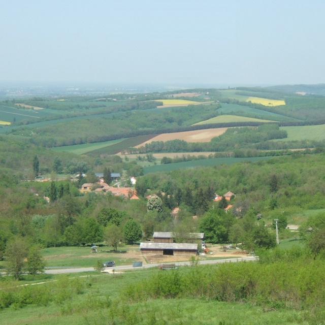 30 fő sem lakja a tündéri zalai falucskát: Teréz anya-kilátója és egy hatalmas bivalyfarmja is van Zalaköveskútnak