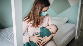 A koronavírusos anyák is nyugodtan szoptathatnak