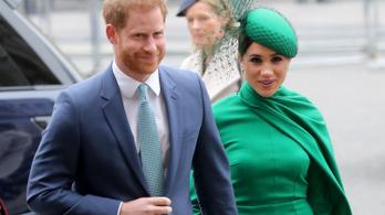 Lebukott a hercegi pár után kémkedő magándetektív
