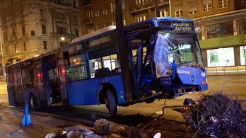 Fát döntött ki egy elszabadult busz Budapest belvárosában