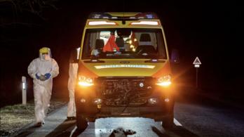 Szarvassal ütközött egy koronavírusos beteget szállító mentő Kiskunhalasnál