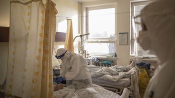 Továbbra is leterheltek a cseh kórházak