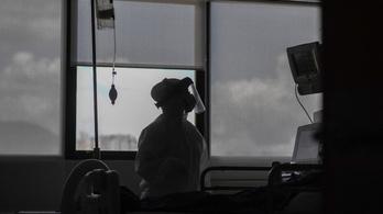 Valóra vált a drámai prognózis, 250 fölött a halottak száma