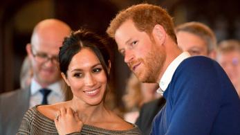Harry hercegre milliós fizetés vár, évi öt munkanapért