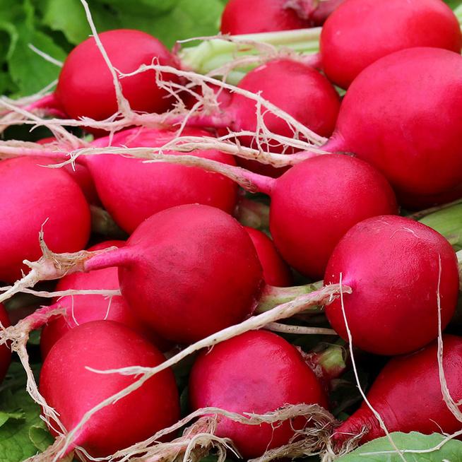 A retek méregteleníti a szervezetet, tele van rosttal és vitaminnal - 7 receptet is mutatunk