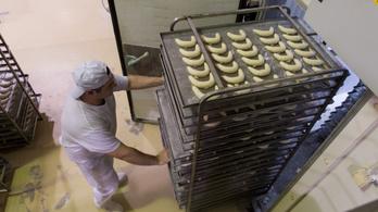 750 milliárd forintból fejleszthet az élelmiszeripar