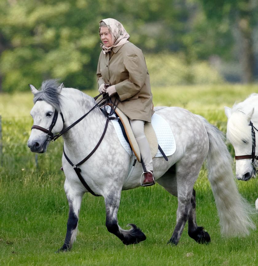 Erzsébet királynő mindig is a lovaglás szerelmese volt.