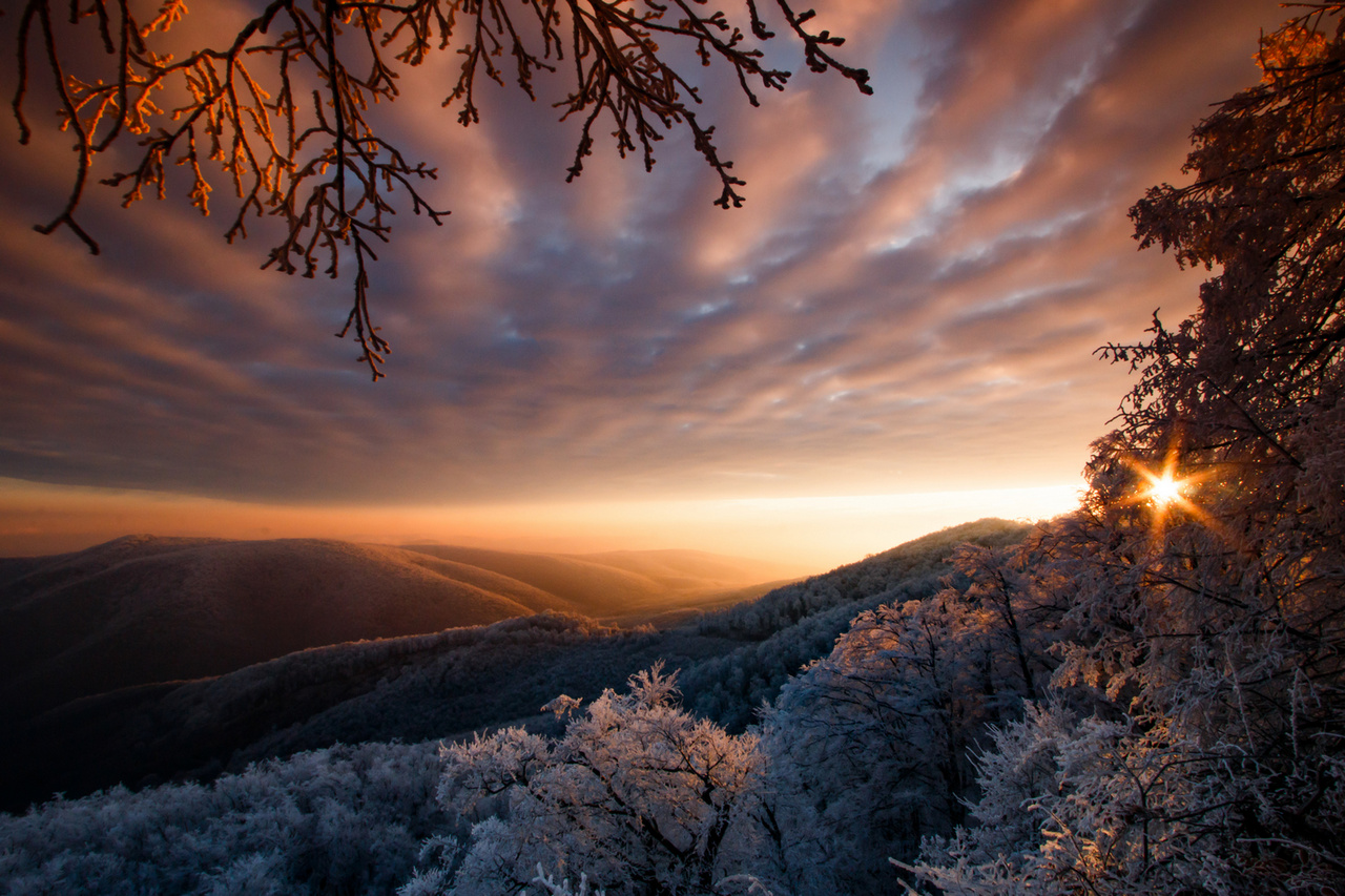 Hajnal - Duna–Ipoly Nemzeti Park