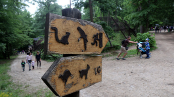 Afrika-házzal gazdagodik a miskolci állatkert