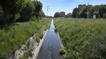 Őszre rendbeteszik a Rákos-patak környékét a Mogyoródi út és a Szugló utca között