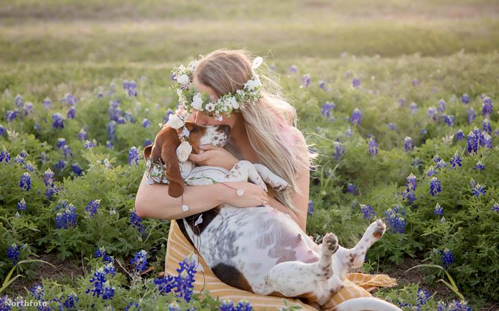 tk3s swns maternity dog 004