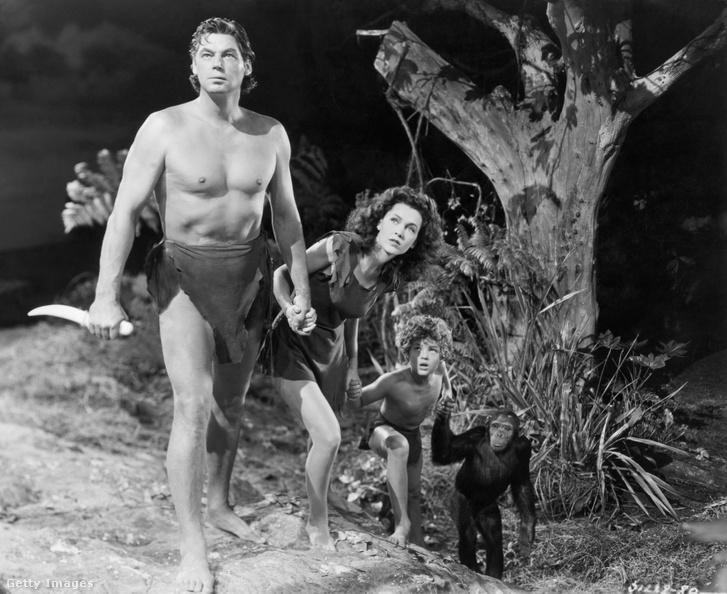 Tarzan (Johnny Weissmuller) Jane (Maureen O'Sullivan) és Fiú (Johnny Sheffield) csimpánzzal az 1942-es Tarzan New York-i kalandja című film jelenetében