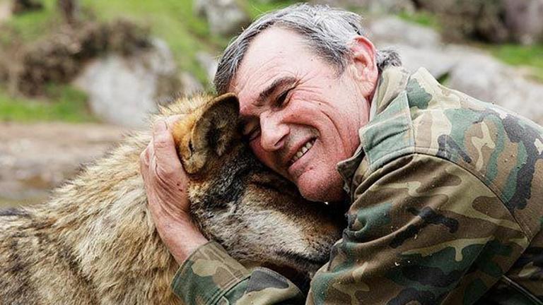 Életben maradhat-e a gyerek, akit farkasok nevelnek?