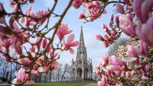 Semmi, csak négy kép a brüsszeli tavaszról