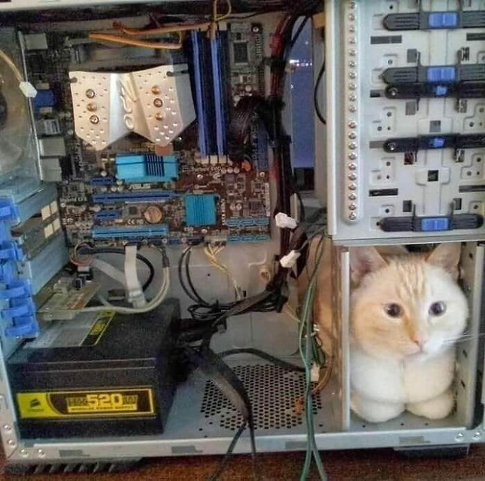 Mi más lehetne kényelmesebb egy számítógép gépházának belsejénél?
